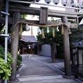 写真: サムハラ神社 鳥居