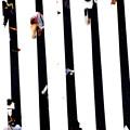 Photos: ミルフィーユな世界