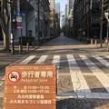 Photos: 歩行者のいない道