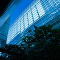 Photos: 4_東京国際フォーラム_002