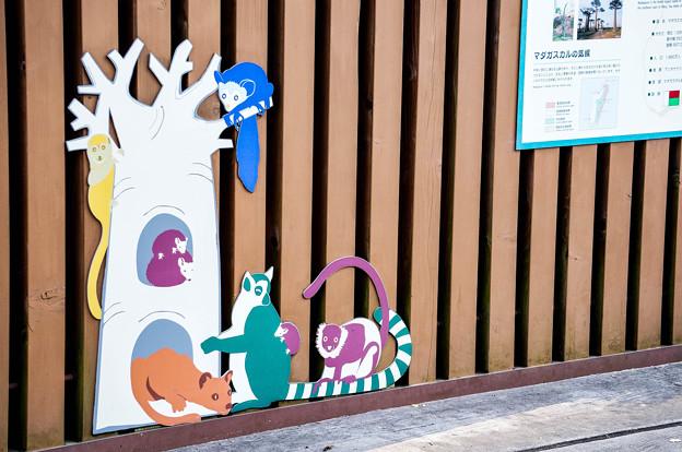 上野動物園_394