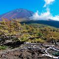 Photos: 荒々しい富士