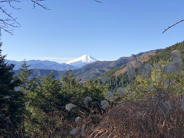 都民の森へ行く途中の富士山