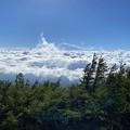 今日の雲海