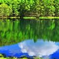 写真: 湖面に浮かぶ新緑と青空と雲