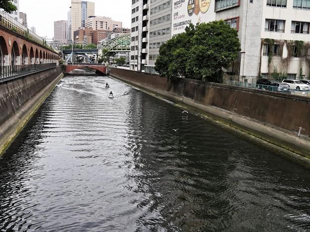 6月10日 神田川