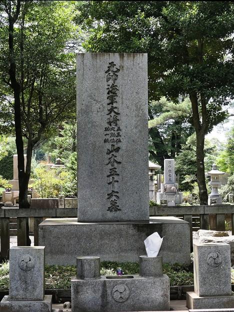 多磨霊園ー6