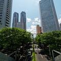 Photos: 新宿の空_2