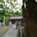 Photos: 新田神社