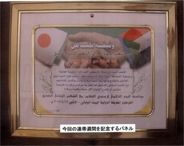 sudan01_5637178226_o