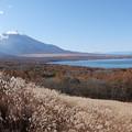Photos: あ!富士山