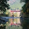 Photos: 秋の水鏡