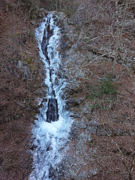 三頭大滝(都民の森)
