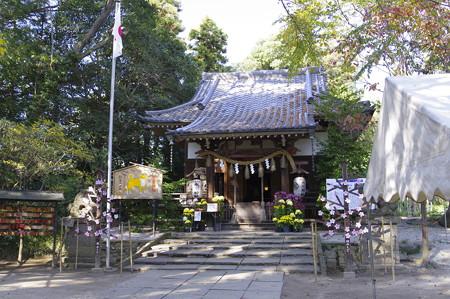 高尾氷川神社 (20)