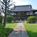 Photos: 青芝光る放光寺