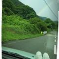 Photos: トトロ?⊂((>⊥<))⊃