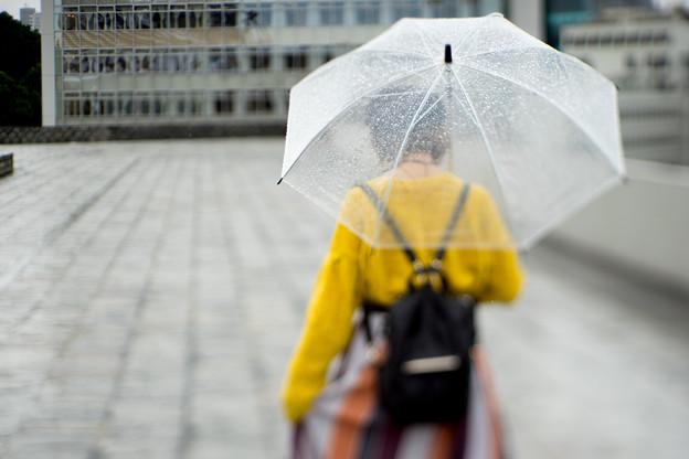 雨の日、後ろ姿
