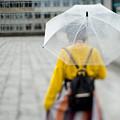 Photos: 雨の日、後ろ姿