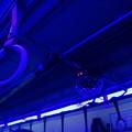 写真: 神戸ディスコトレイン0011