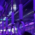 写真: 神戸ディスコトレイン0012