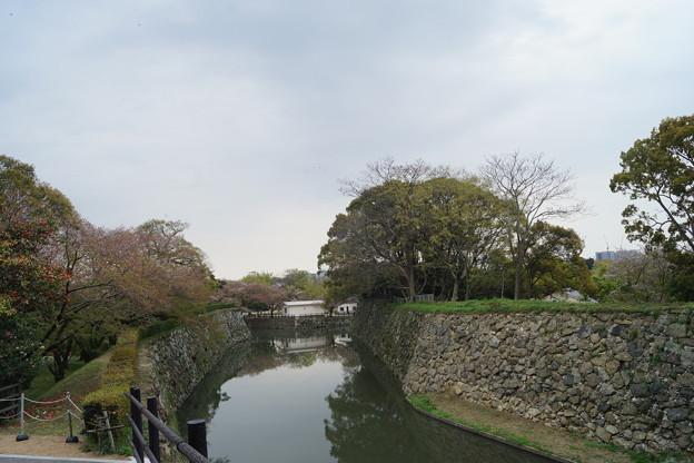 姫路城の写真0193