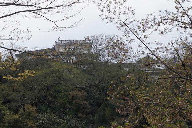 姫路城の写真0200