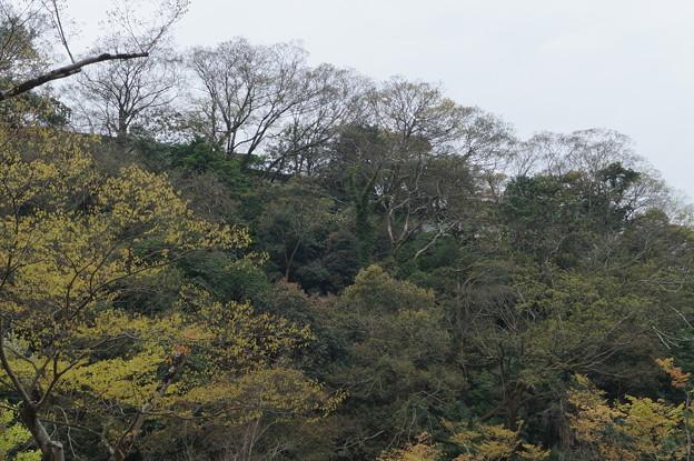 姫路城の写真0203