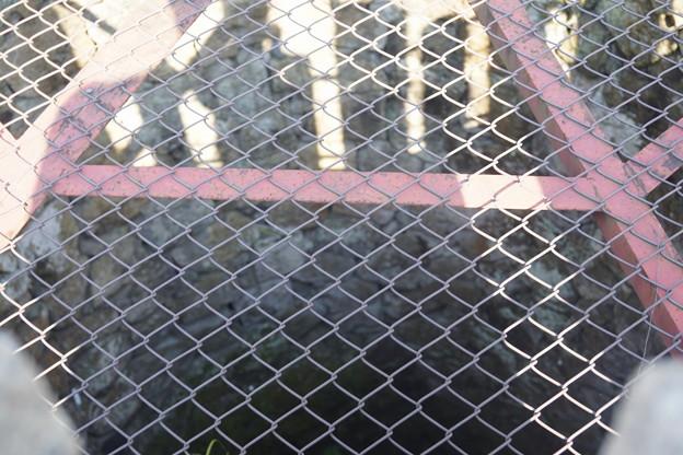 姫路城の写真0358