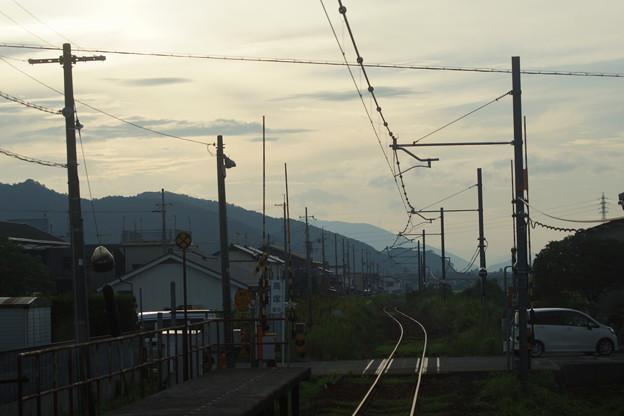 写真: 小浜線の車窓0160
