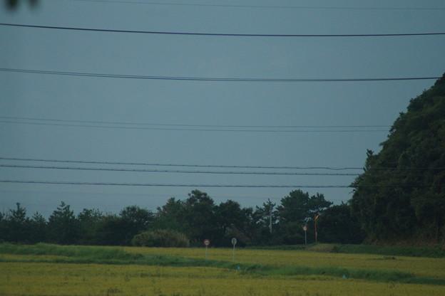 小浜線の車窓0208
