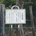 写真: 長浜鉄道スクエア0017