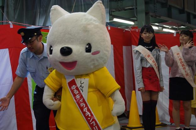 神鉄トレインフェスティバル(2018)0089