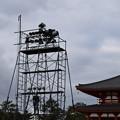 Photos: 冬の奈良市内の写真0012