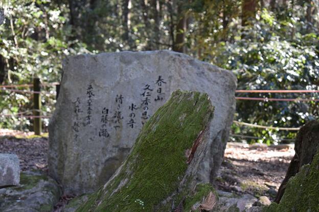 冬の奈良市内の写真0040