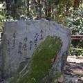 Photos: 冬の奈良市内の写真0040