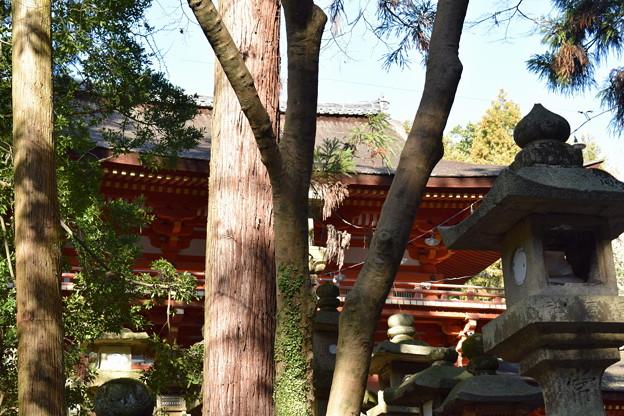 冬の奈良市内の写真0041