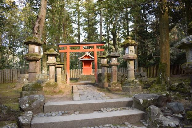 冬の奈良市内の写真0045