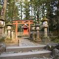 Photos: 冬の奈良市内の写真0045