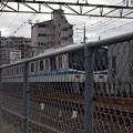 写真: 百舌鳥八幡駅周辺の写真0023