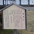 Photos: 福知山城の写真0014