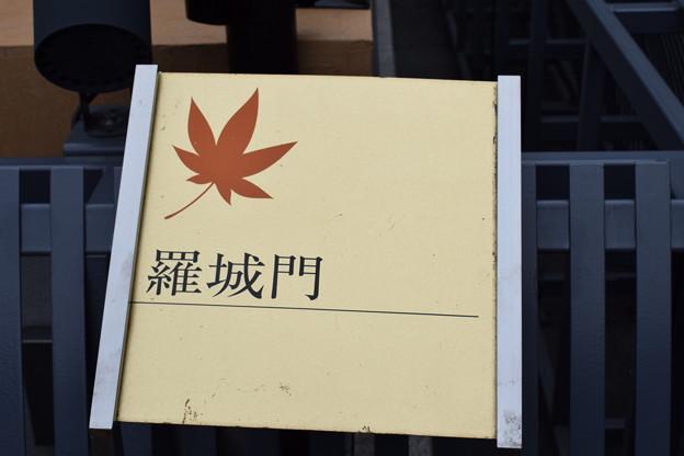 京都駅前のバスロータリー0027
