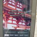 Photos: 京都駅前のバスロータリー0029