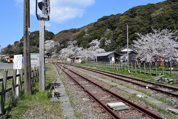 Photos: 敦賀市内の写真0190