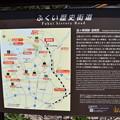 Photos: 敦賀市内の写真0196