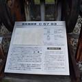 Photos: 生野駅周辺の写真0015