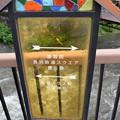 Photos: JR長浜駅周辺の写真0033