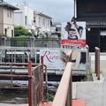Photos: JR長浜駅周辺の写真0035