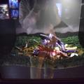 Photos: 海洋堂フィギュアミュージアム黒壁の写真0189