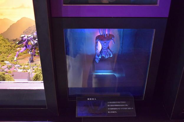 Photos: 海洋堂フィギュアミュージアム黒壁の写真0190