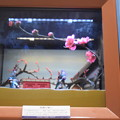 Photos: 海洋堂フィギュアミュージアム黒壁の写真0320